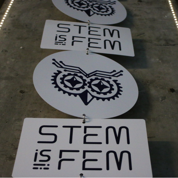 "STEM is FEM announces the prize of its fifth Module ""3D Modelling and Printing"""